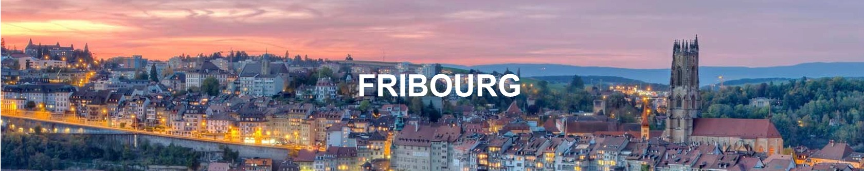 evolution prix immobilier fribourg 2019
